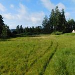 14 Lots On 2.6 Acres Cleared W/ Marine View